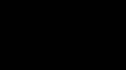 Interview: Dutch Hotel Partners